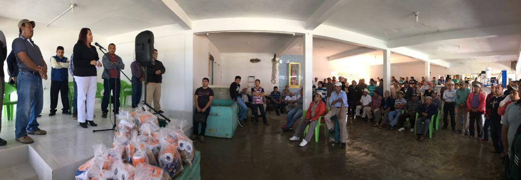 Sector pesquero el más productivo y el más saqueado: Tamiahua