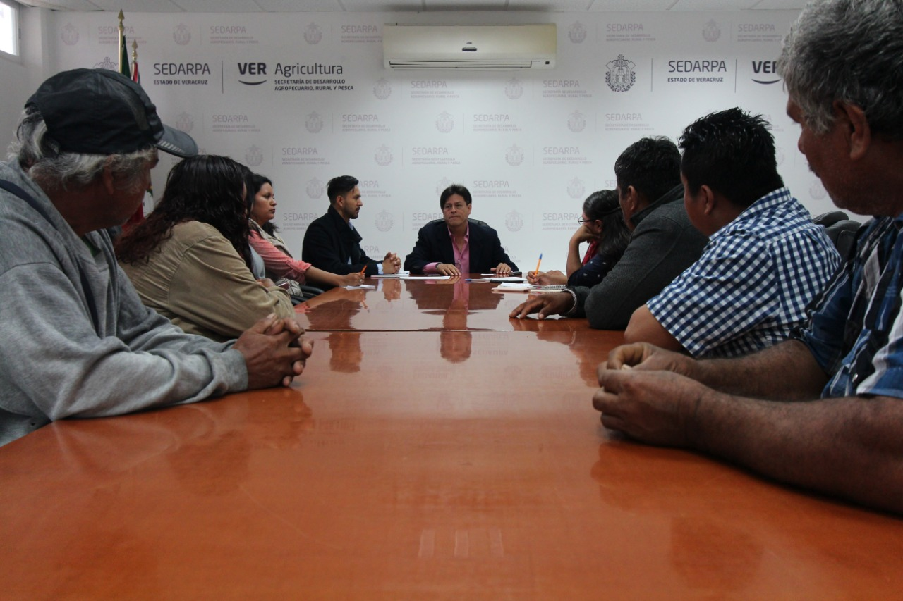 Atiende Sedarpa al Consejo Nacional Campesina LIMAKXTUM, AC