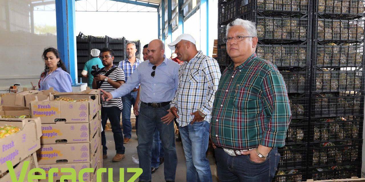 Diálogo permanente con los productores: Guzmán Avilés