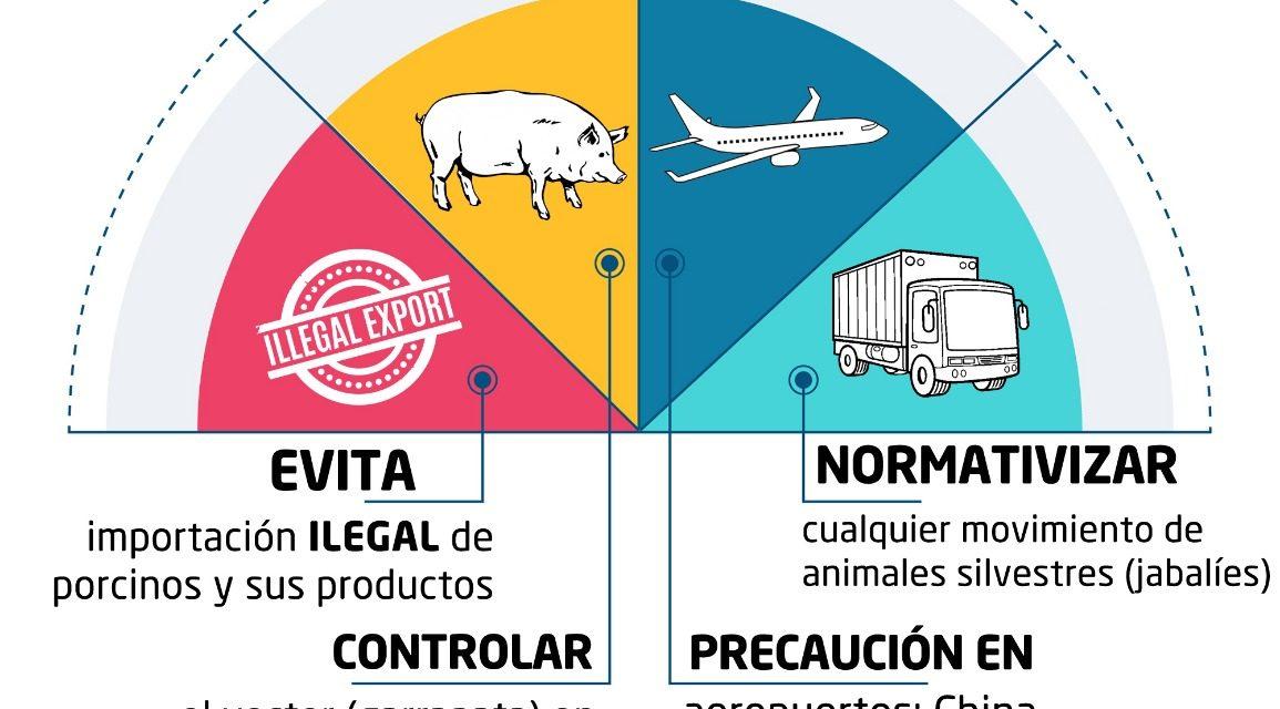 Establecen medidas preventivas para evitar introducción de la PPA