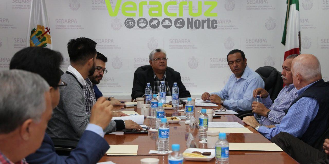Preside Guzmán Avilés sexta sesión del FIVERFAP