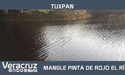 MANGLE ROJO ORIGINÓ COLORACIÓN ROJIZA DE RÍO TUXPAN