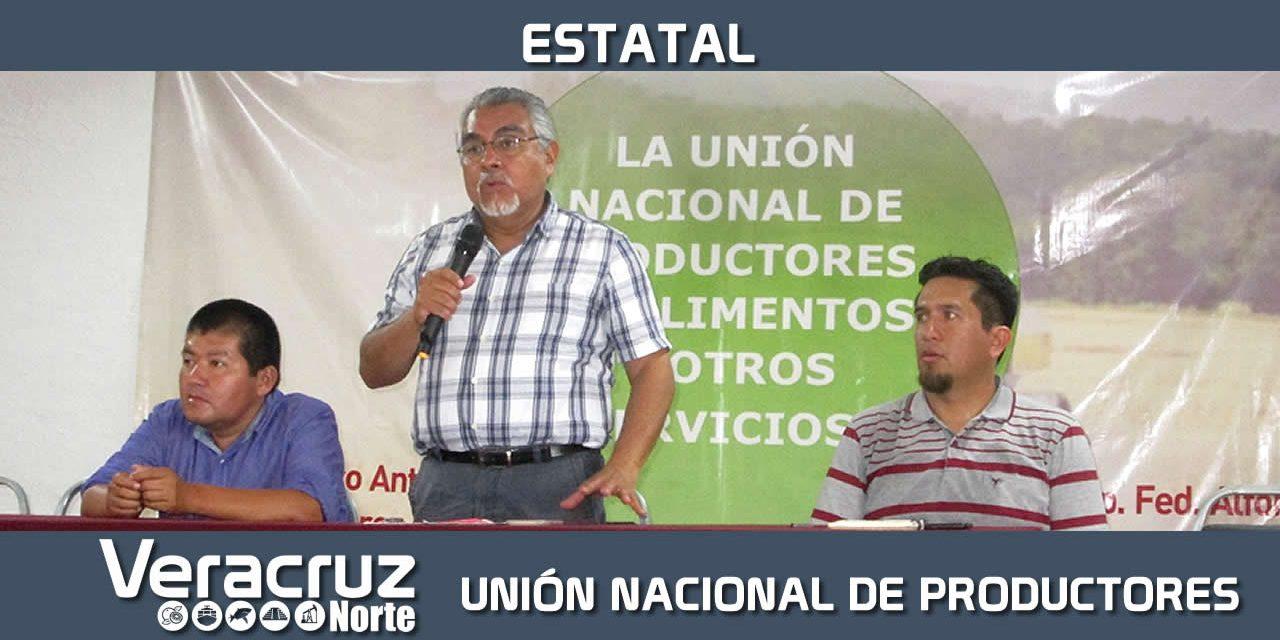 En Vías de Conformarse Unión Nacional de Productores