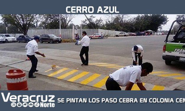 SE PINTAN LOS PASO CEBRA EN COLONIA CENTRO