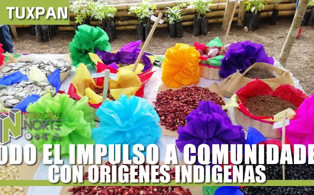 TODO EL IMPULSO A COMUNIDADES CON ORÍGENES INDÍGENAS