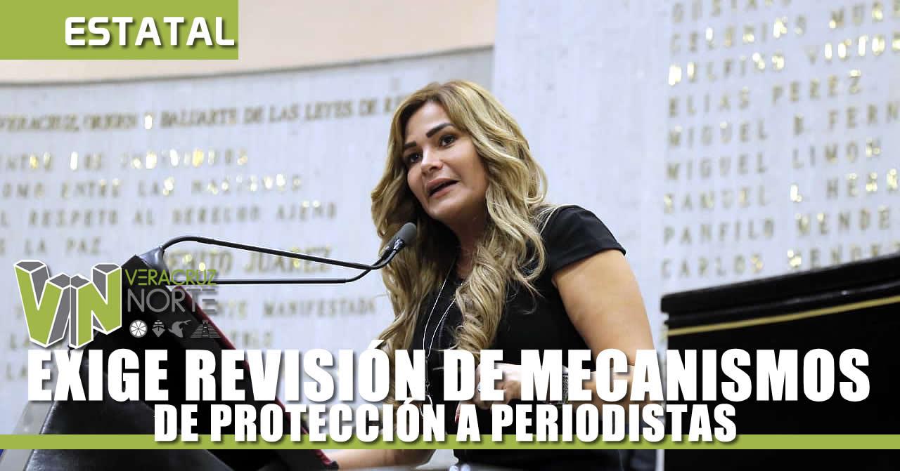 REVISIÓN DE MECANISMOS DE PROTECCIÓN A PERIODISTAS