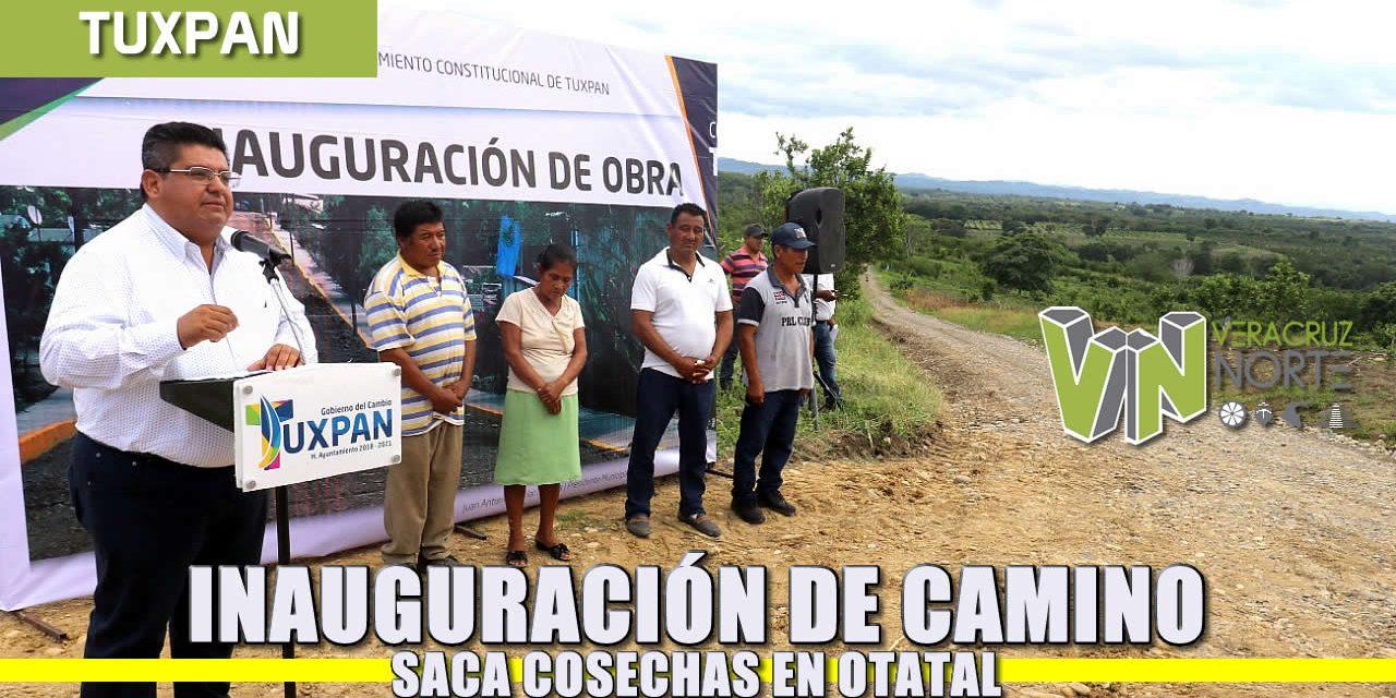 Inauguración de camino saca-cosechas en Otatal