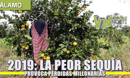 2019: LA PEOR SEQUÍA PROVOCA PÉRDIDAS MILLONARIAS