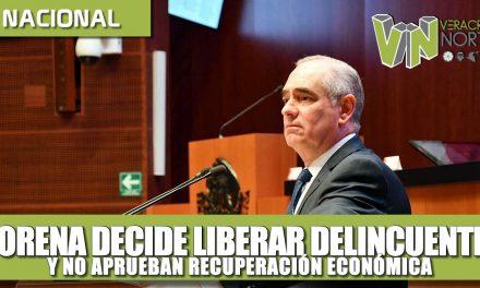 Vergonzoso que Morena decida liberar delincuentes y no aprobar plan de recuperación económica: Julen Rementería