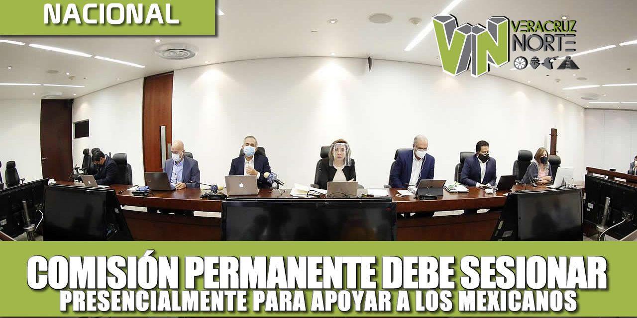 Comisión Permanente debe de sesionar presencialmente para ayudar a los mexicanos: Julen Rementería