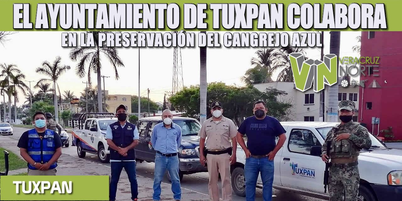 EL AYUNTAMIENTO DE TUXPAN COLABORA EN LA PRESERVACIÓN DEL CANGREJO AZUL