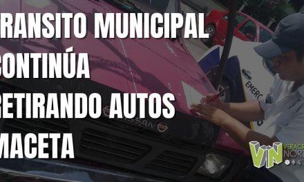 TRANSITO MUNICIPAL CONTINÚA RETIRANDO AUTOS MACETA